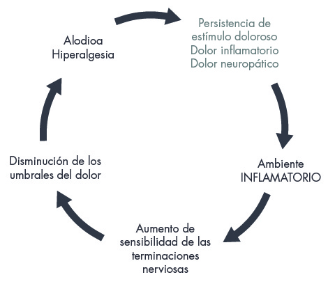 grafico endometriosis