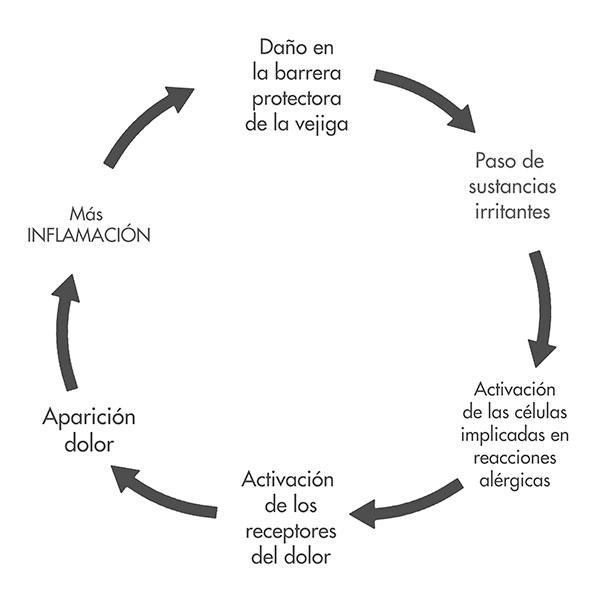 diagrama sindrome vejiga dolorosa